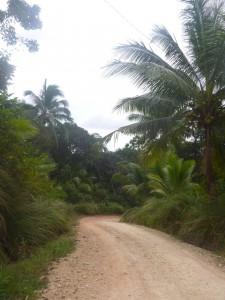 road and views to Valle Verde, Rivana, Sibunag, Guiamaras